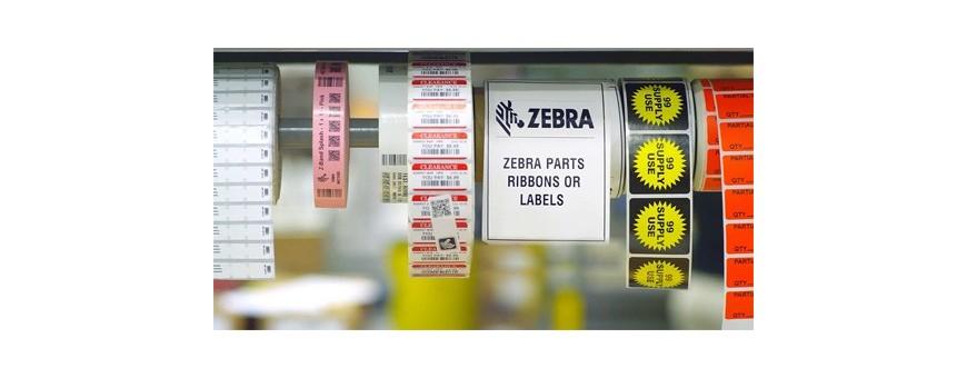 Etichette, Braccialetti & Ribbon - Zebra